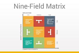 Nine-Field Matrix Diagrams Google Slides Template
